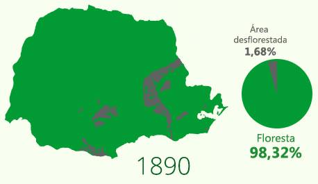 Floresta com Araucária em 1890
